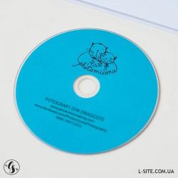 DVD-R диски